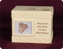 Dog Paw Prints Box